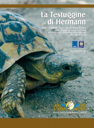 Libro--Testuggine-di-Hermann